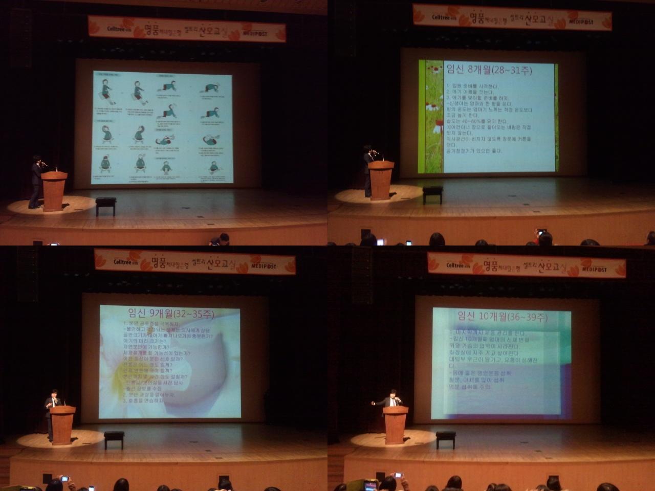 2012-11-28_14.52-tile[0].jpg