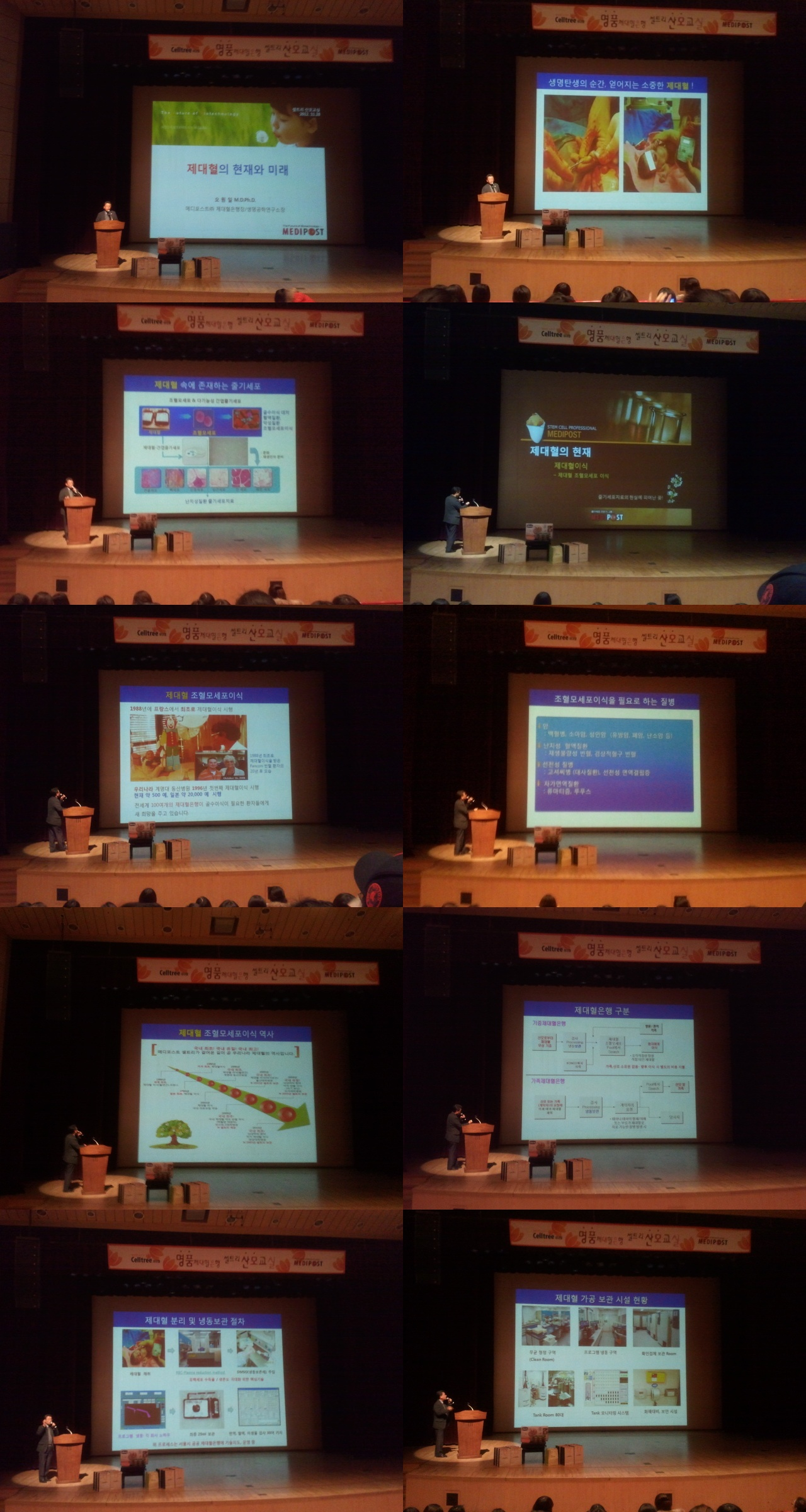 2012-11-28_15.32-tile.jpg