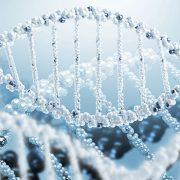 메디포스트 줄기세포 능력 향상 기술 특허 취득