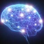 메디포스트 제대혈 내 알츠하이머 치료 물질 중국 특허
